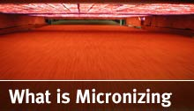 What is Micronizing